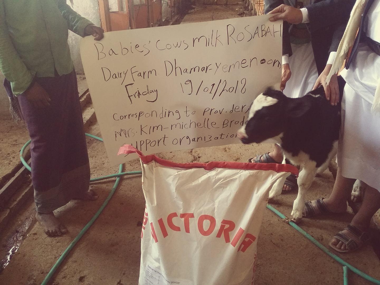 Dhamar Rosabah Farm Rescue cows OWAP-AR 19 Jan 2018 Yemen fateh Badi pic and work 27140621_746334848910599_2018840800_o (1).jpg