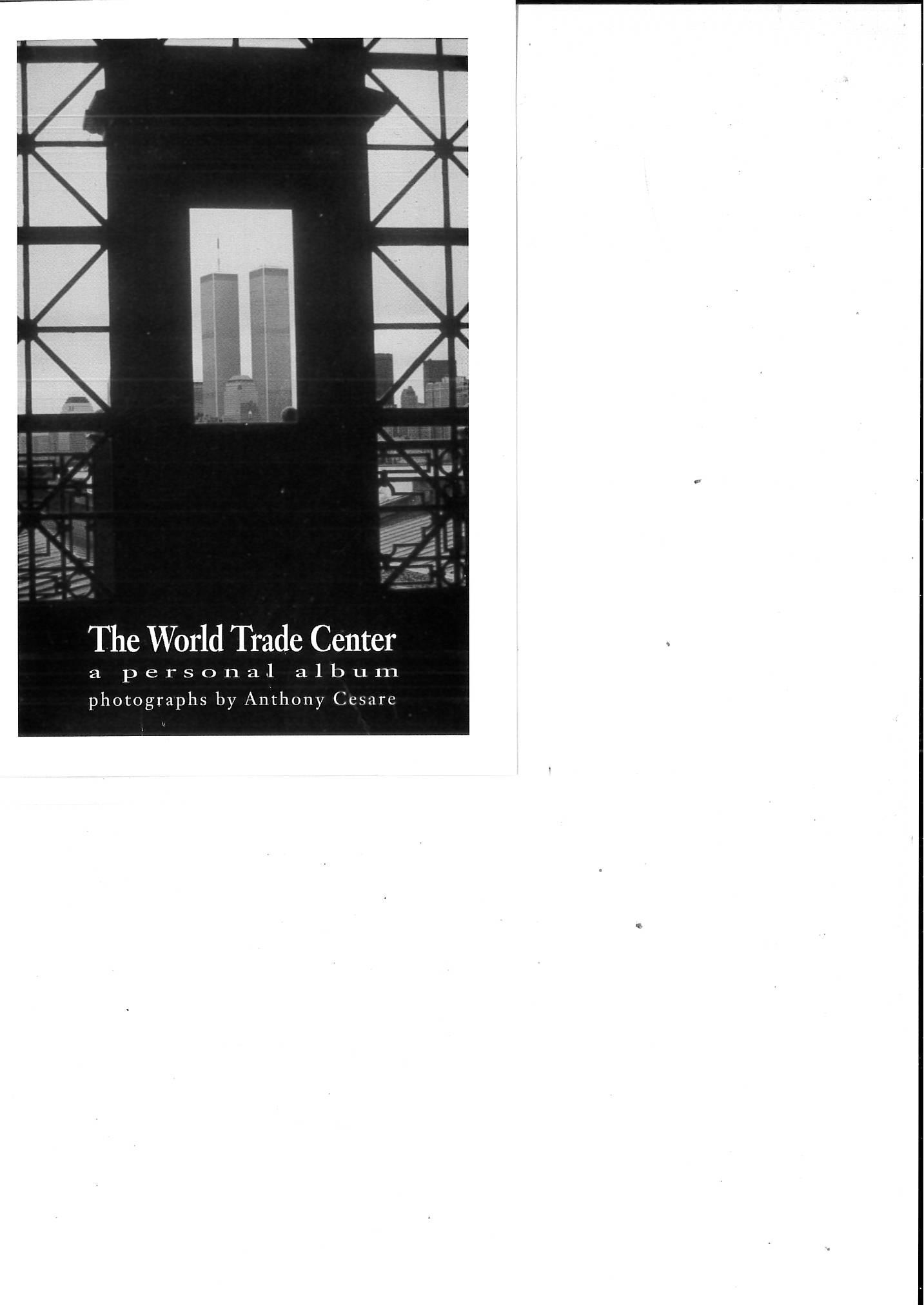 owap exhibit of tony cesare's photos of WTC postcard intro.jpg