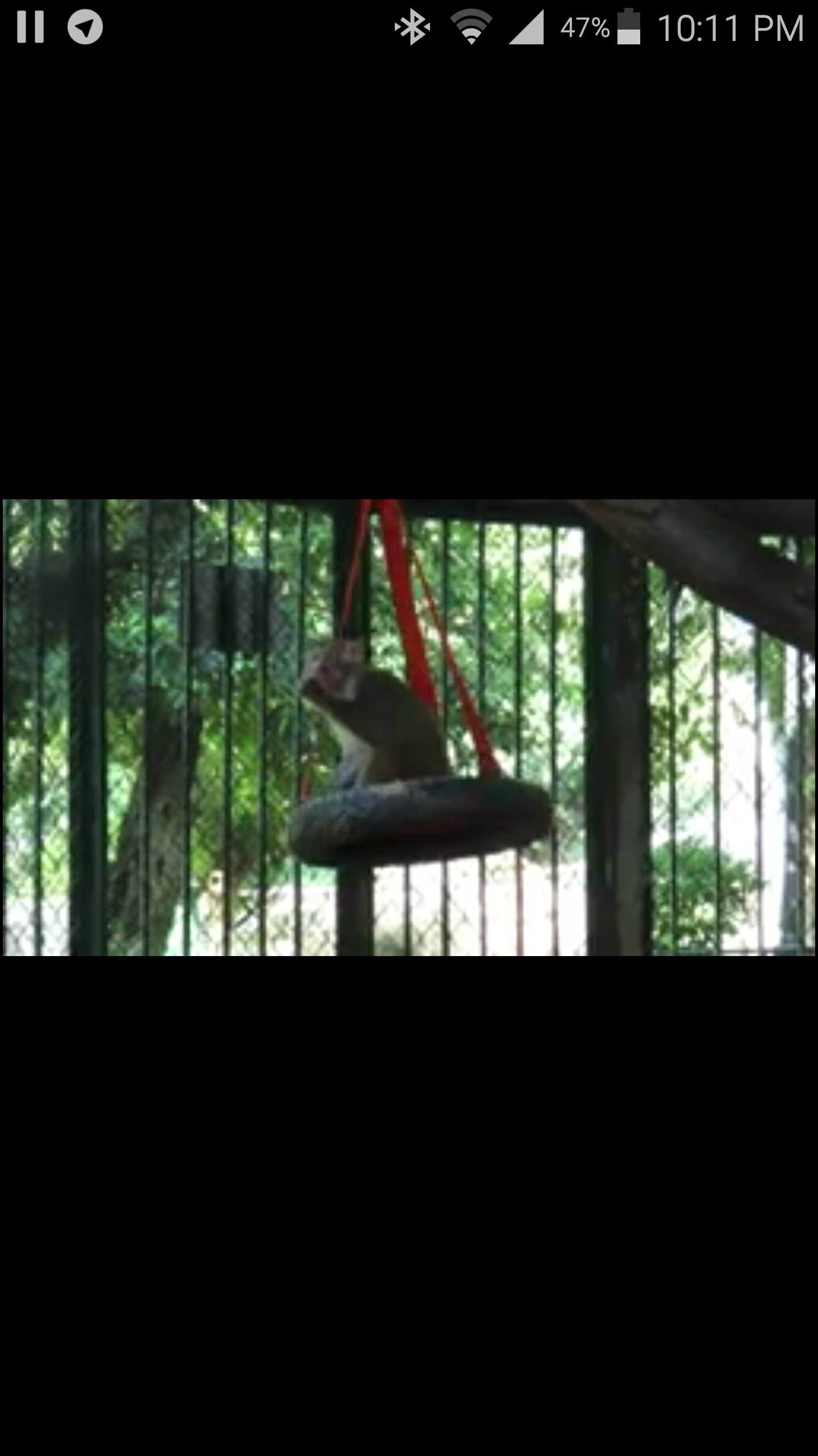 ibb zoo OWAPAR  Baboon swinging seats project 14 APRIL 2018 haitham.png