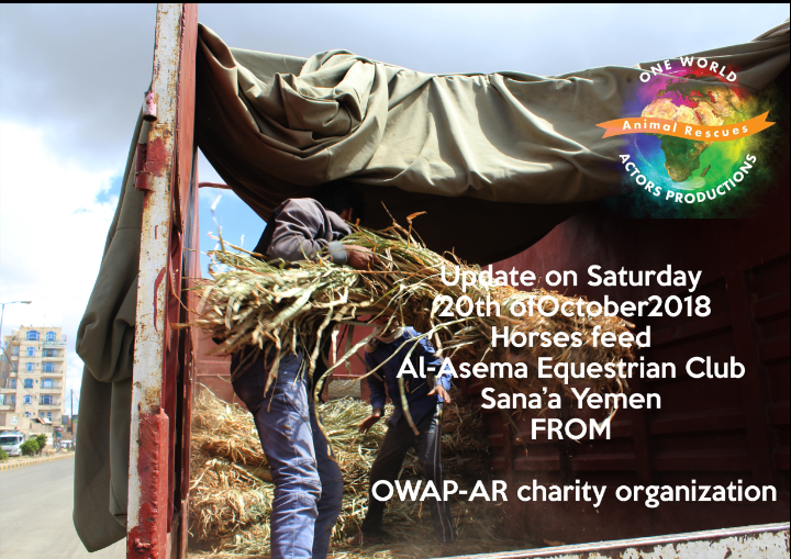 riding delivery 20 OCT 2018 correct date nada cane for horses sana'a by OWAP-AR providing.png