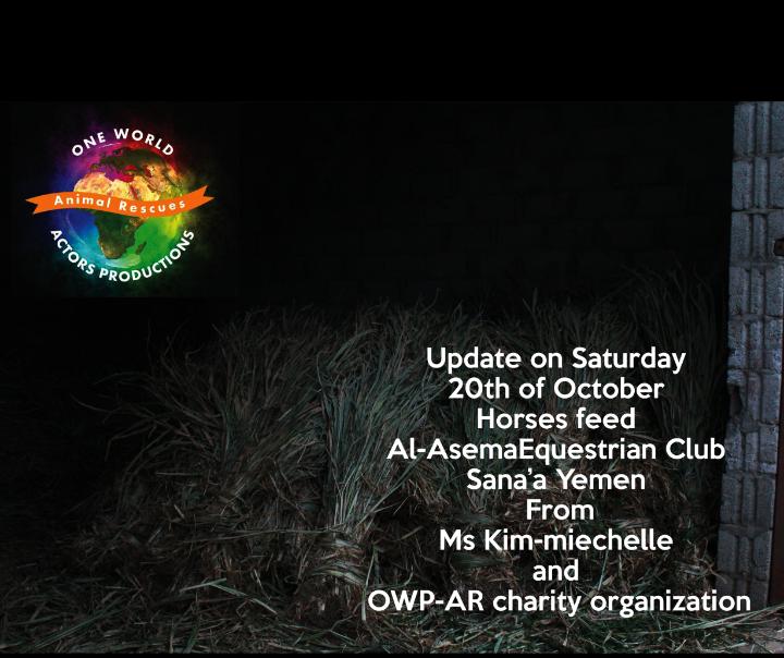 Riding OWAP AR providing 20 oct 2018 Nada pic Rescue Horses Sana'a yemen.png