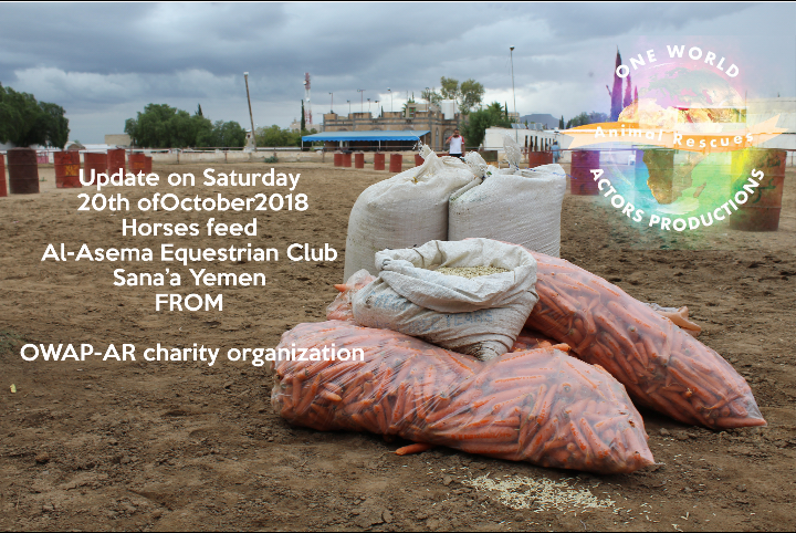 riding correct date year 20 OCT 2018 THE CLUB EQUESTRIAN Sana'a nada grains, dates and carrots for the Horses ..by OWAP-AR Charity.png
