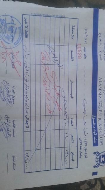 riding 4 NOV 2018 receipt to OWAP-AR paid sanaa club equestre yemen rescue.jpg