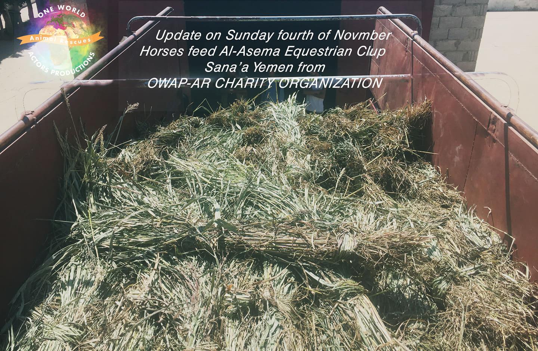 Riding club OWAP-AR provisions for horses sana'a 60 .Nada coordinating 4 NOV 2018.jpg
