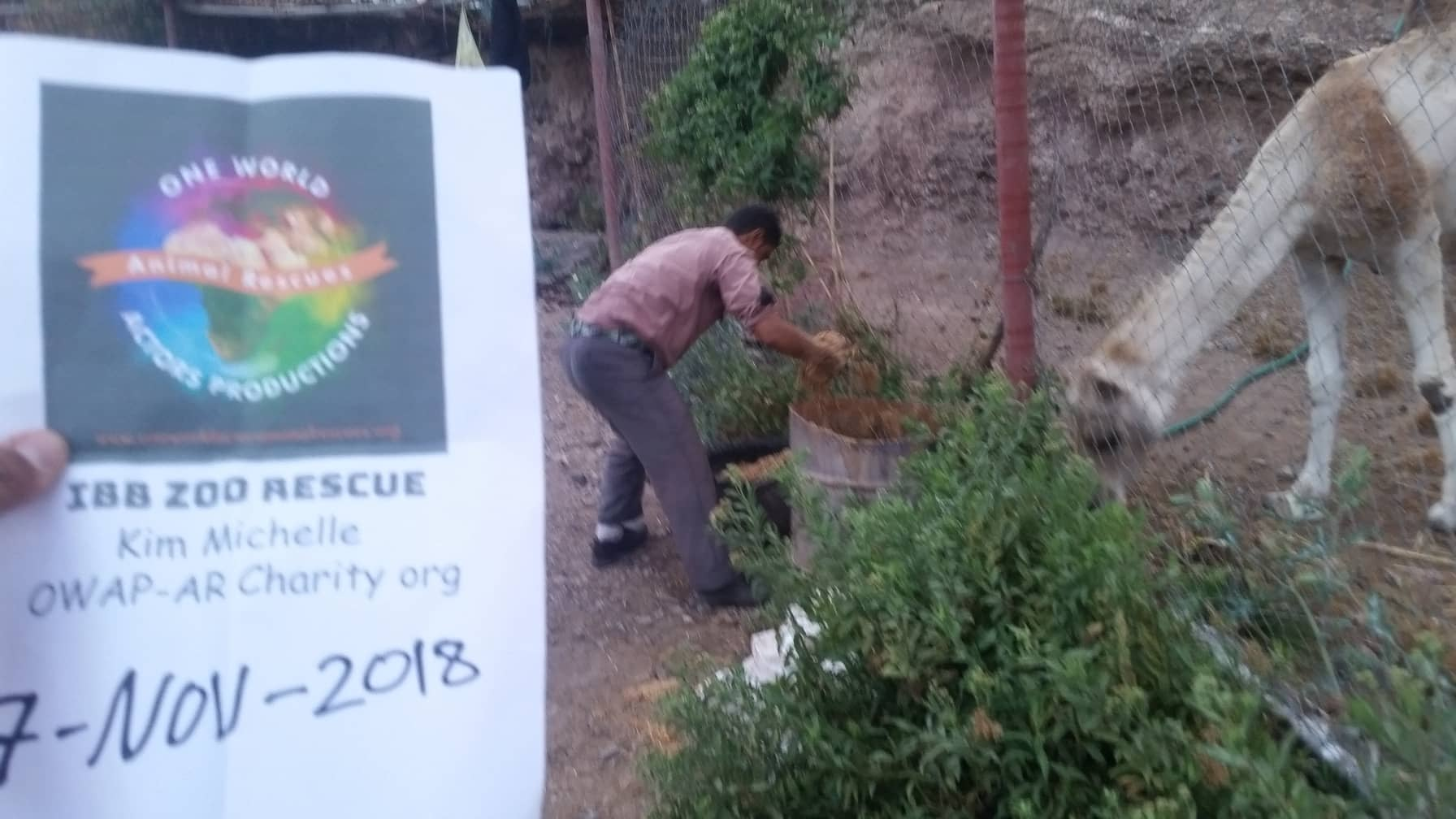 ibb zoo special feed for the horses  found and delivered by hisham 17 NOV 2018 OWAP-AR sign.jpg
