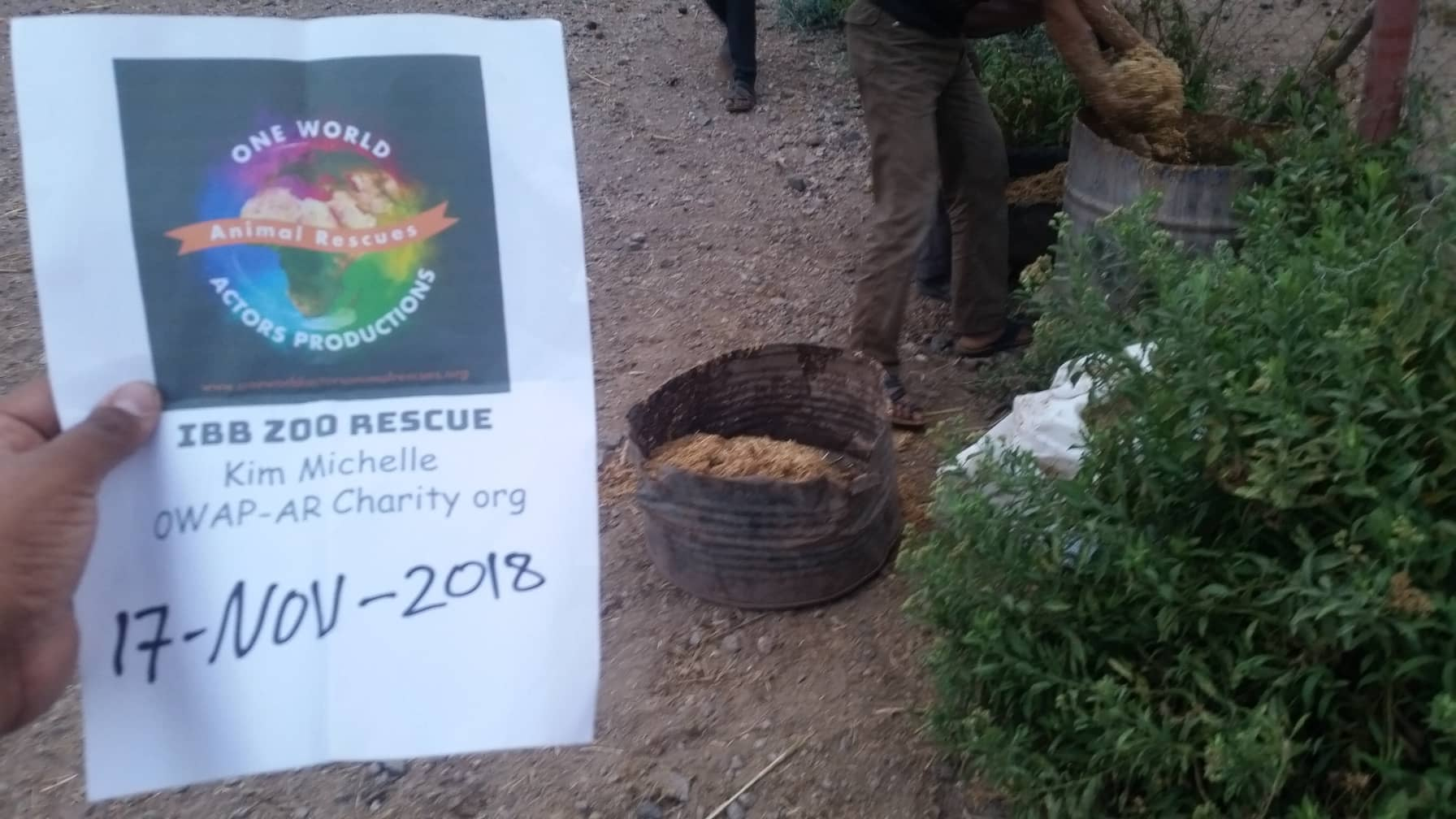 ibb zoo yemen rescue by OWAP-AR Hisham special feed for ibb horses delivery today 17 NOV 2018 with our sign.jpg
