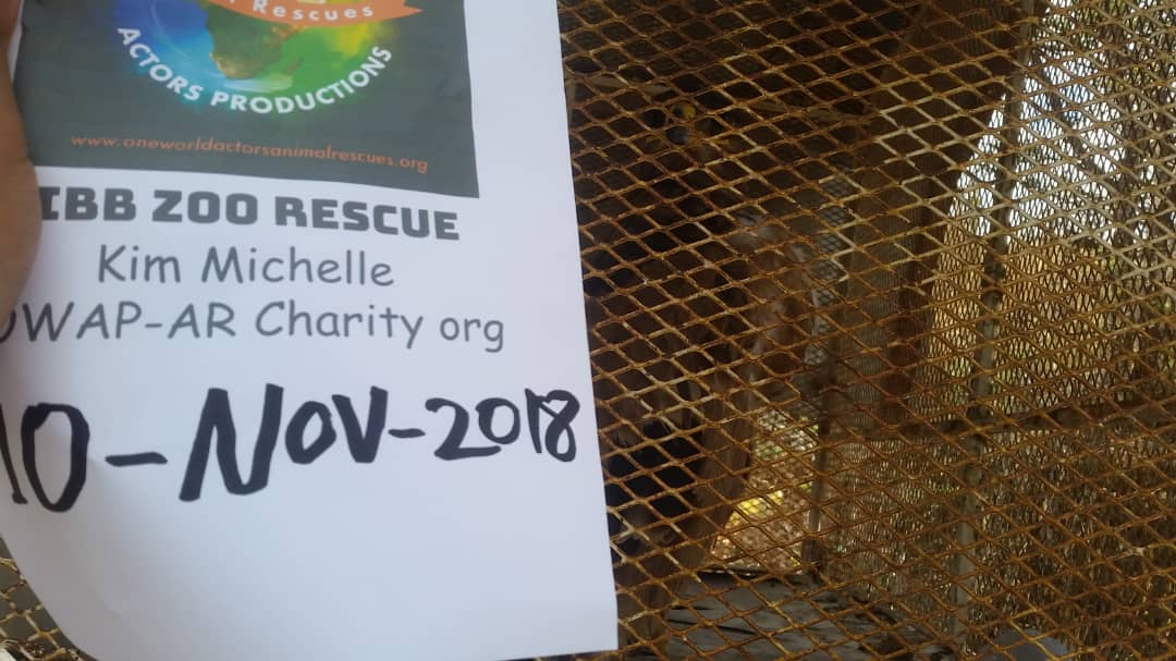 IBB ZOO WITH OWAP AR SIGN EAGLE 10 NOV 2018 HISHAM FEEDING YEMEN RESCUE.jpg