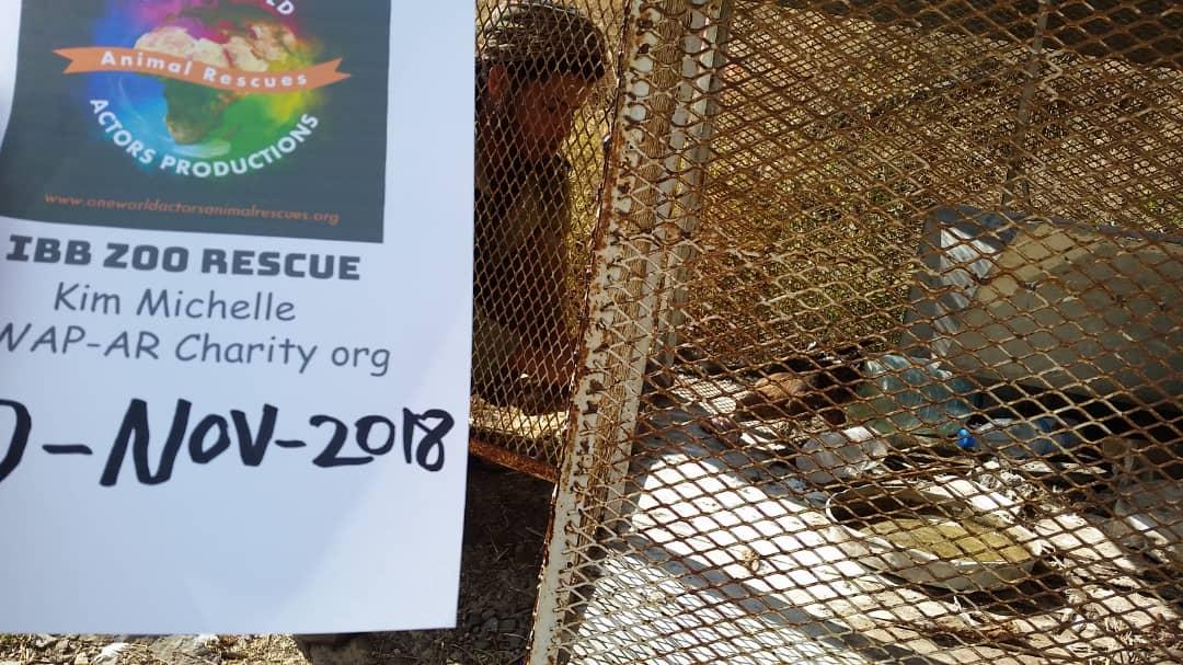 ibb zoo by OWAP-AR Abdul razak placing food and water for 2 eagles 10 NOV 2018 Hisham media.jpg