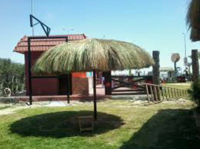 ibb zoo parasol example.jpg