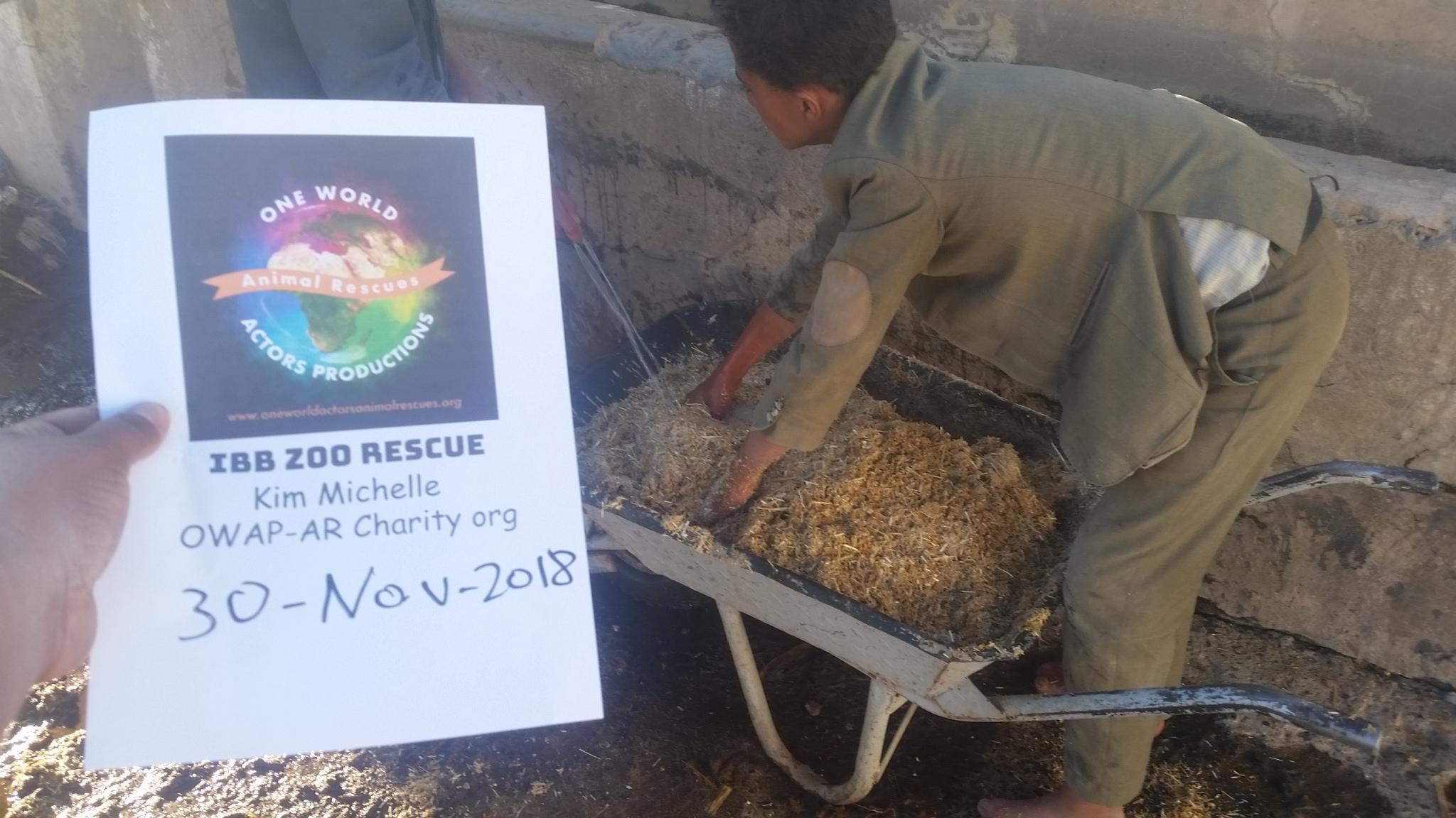 qrab dhamar preparing the fodder special feed from OWAP-AR N-P 30 NOV 2018 for 19 Horses.jpg