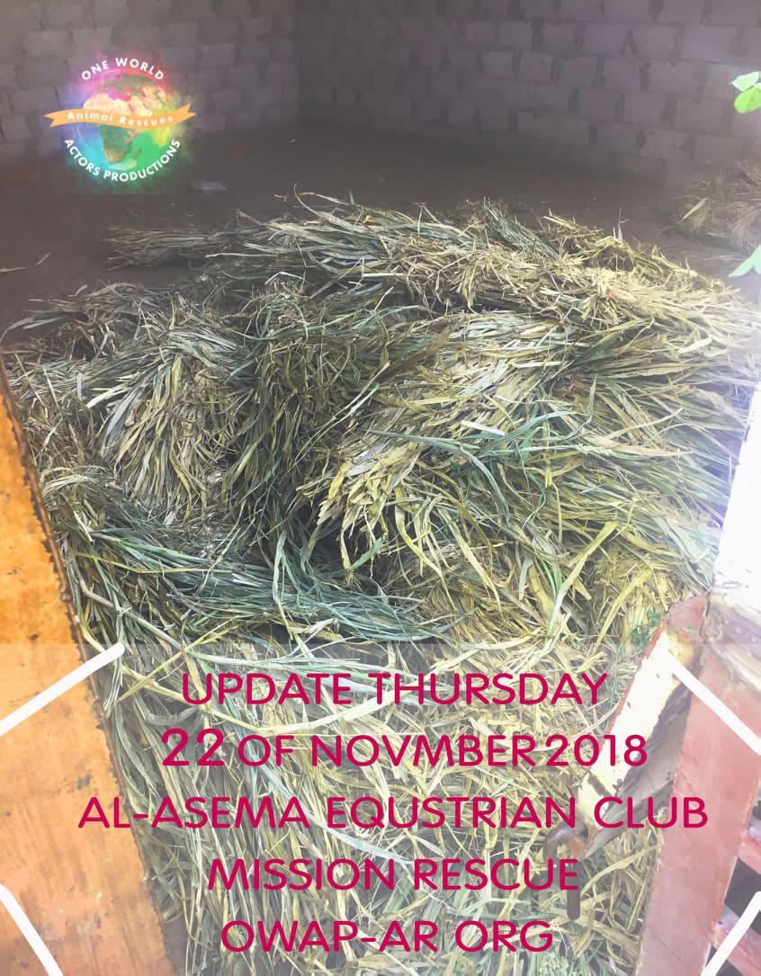riding club sana'a 22 nov 2018 OWAP-AR delivery fodder.jpg
