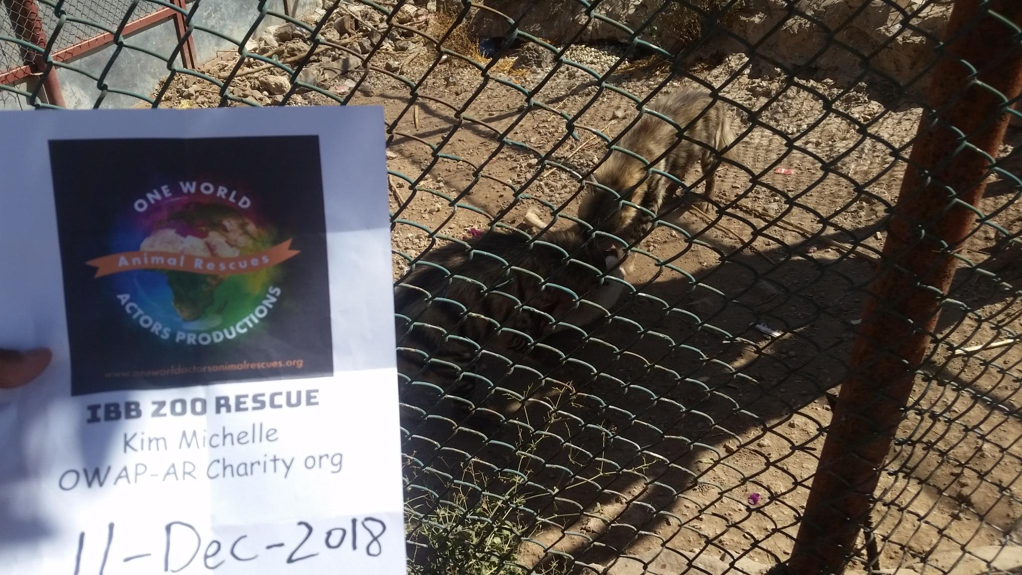 ibb zoo hyenas feasting OWAPAR sign 11 DEC 2018.jpg