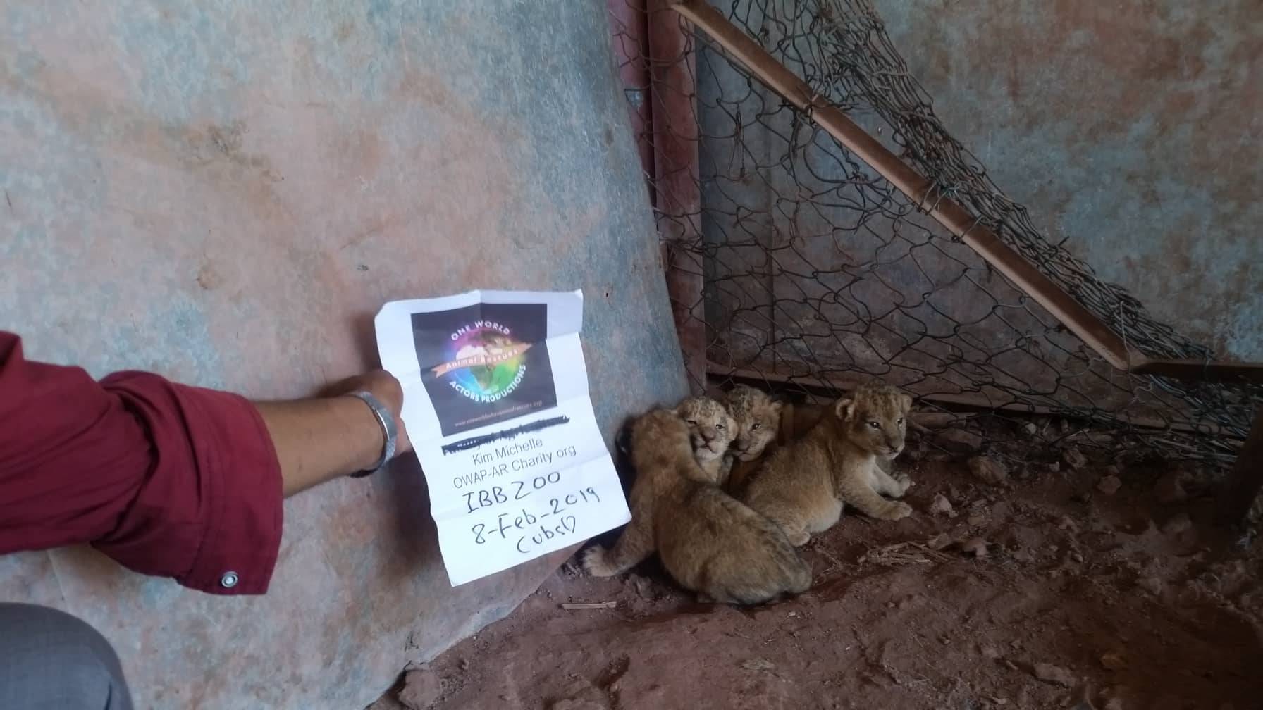 ibb zoo 8 FEB 2019 cubs OWAPAR sign with Hisham Coordinator.jpg
