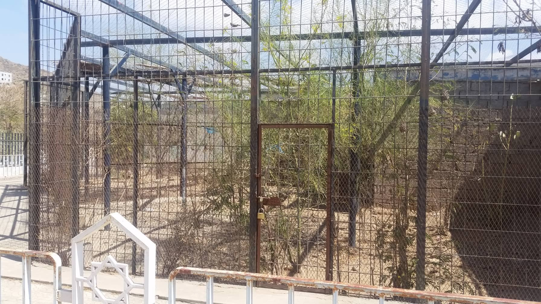 taiz 9 FEB 2019 OWAP-AR copywrite zoo yemen outside enclosure.jpg
