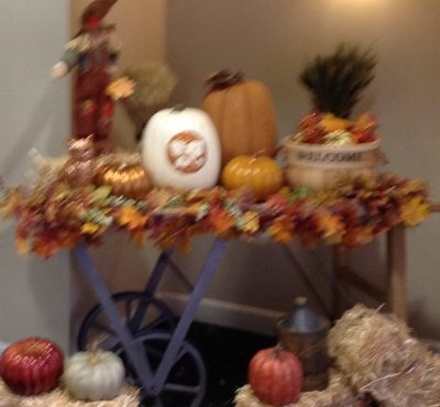 Entry area during our consultation, set with their fall display (sorry for the blurry picture!)
