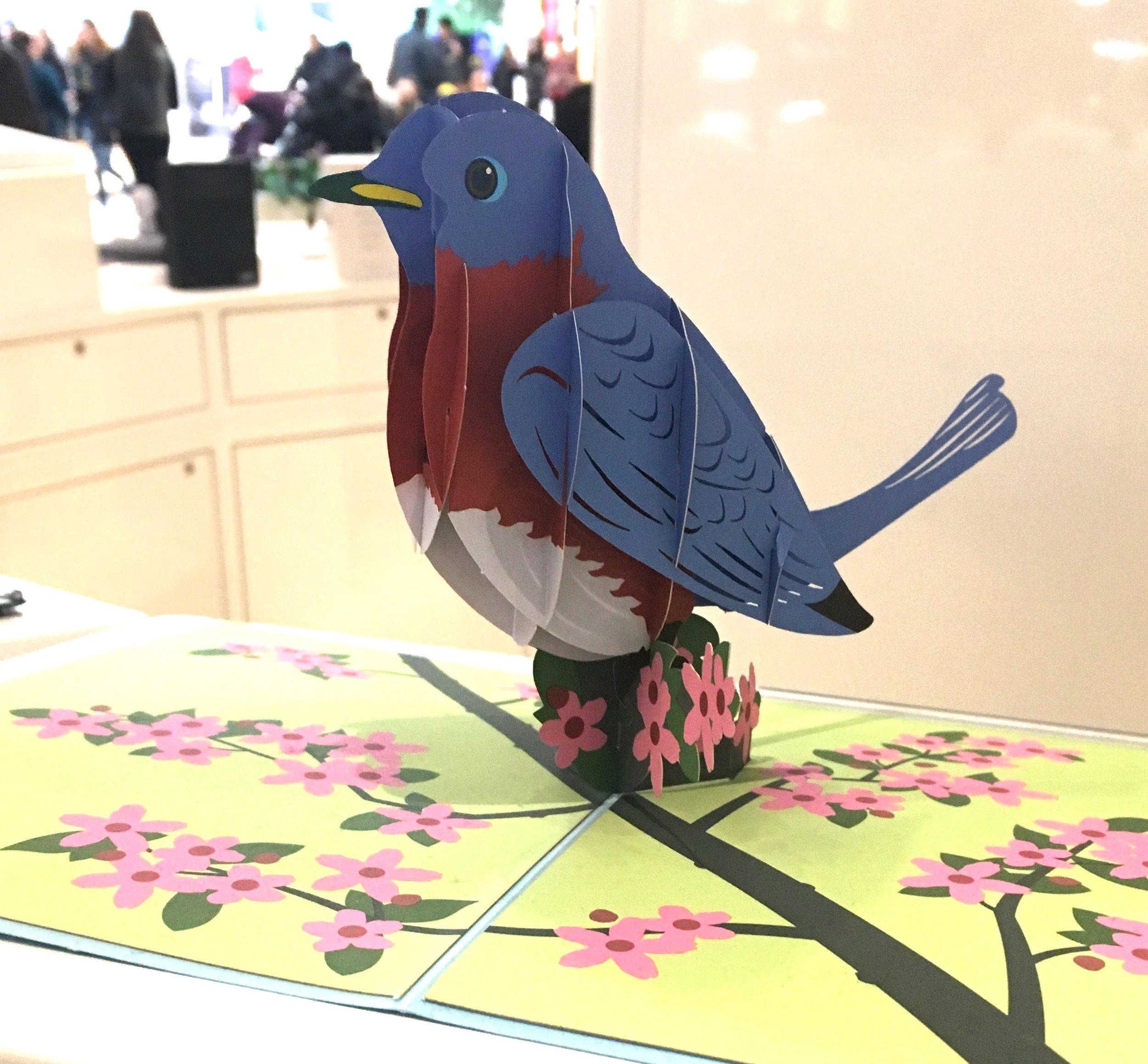 Love pop bluebird card