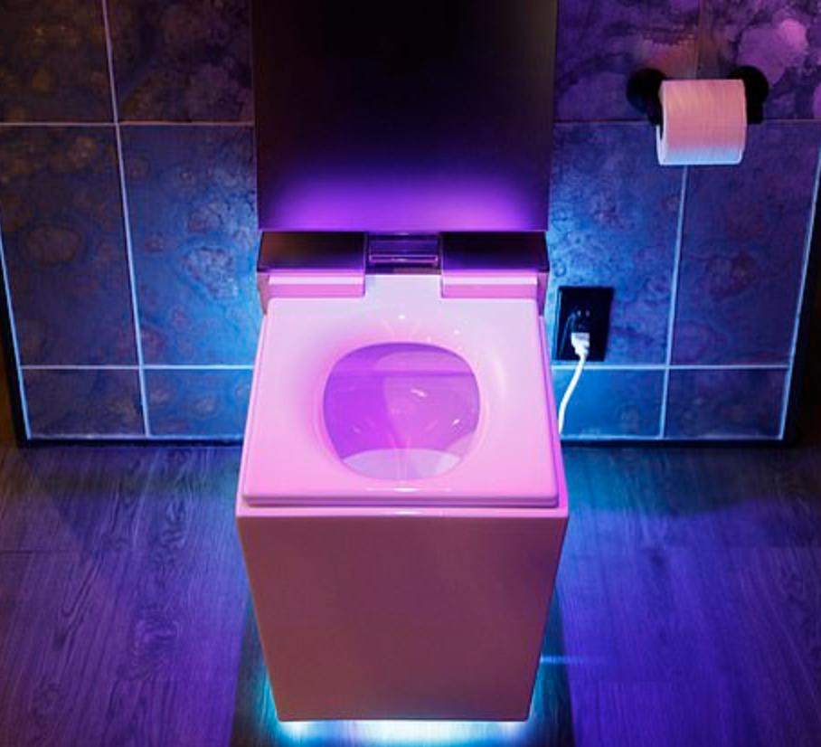 The Kohler Numi 2.0 toilet via   Daily Mail