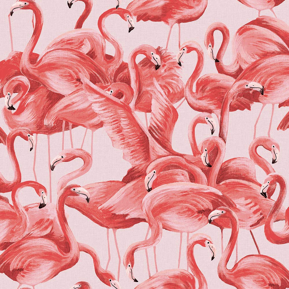 Flamingo Removable Peel and Stick Wallpaper