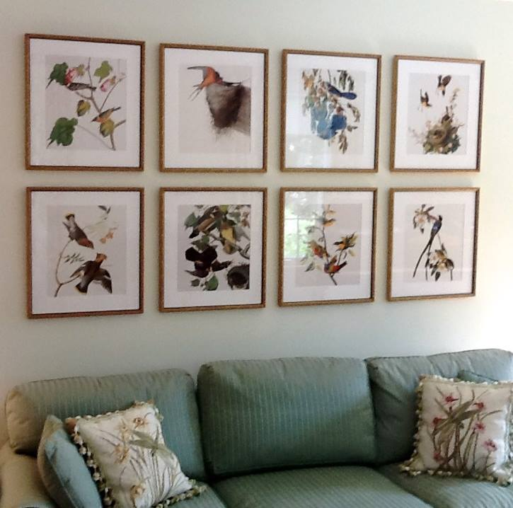 A series of Audubon prints hung in a grid over a sofa