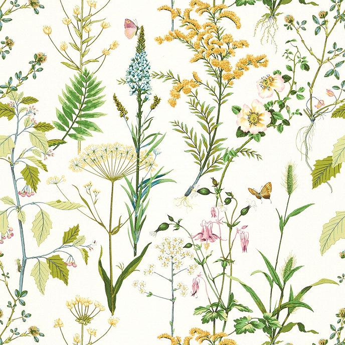 Isabella cotton fabric
