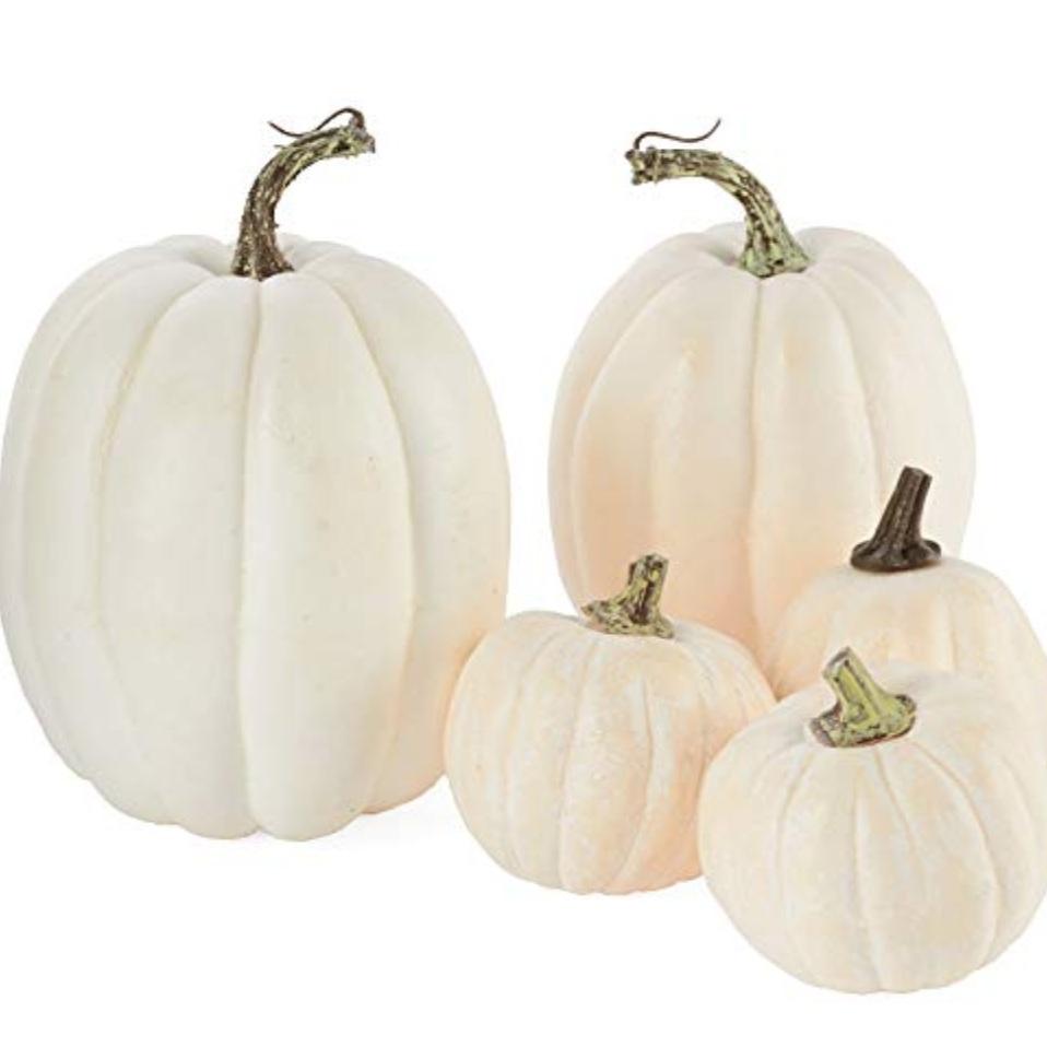 "Set/5 3.5""-7"" white pumpkins"