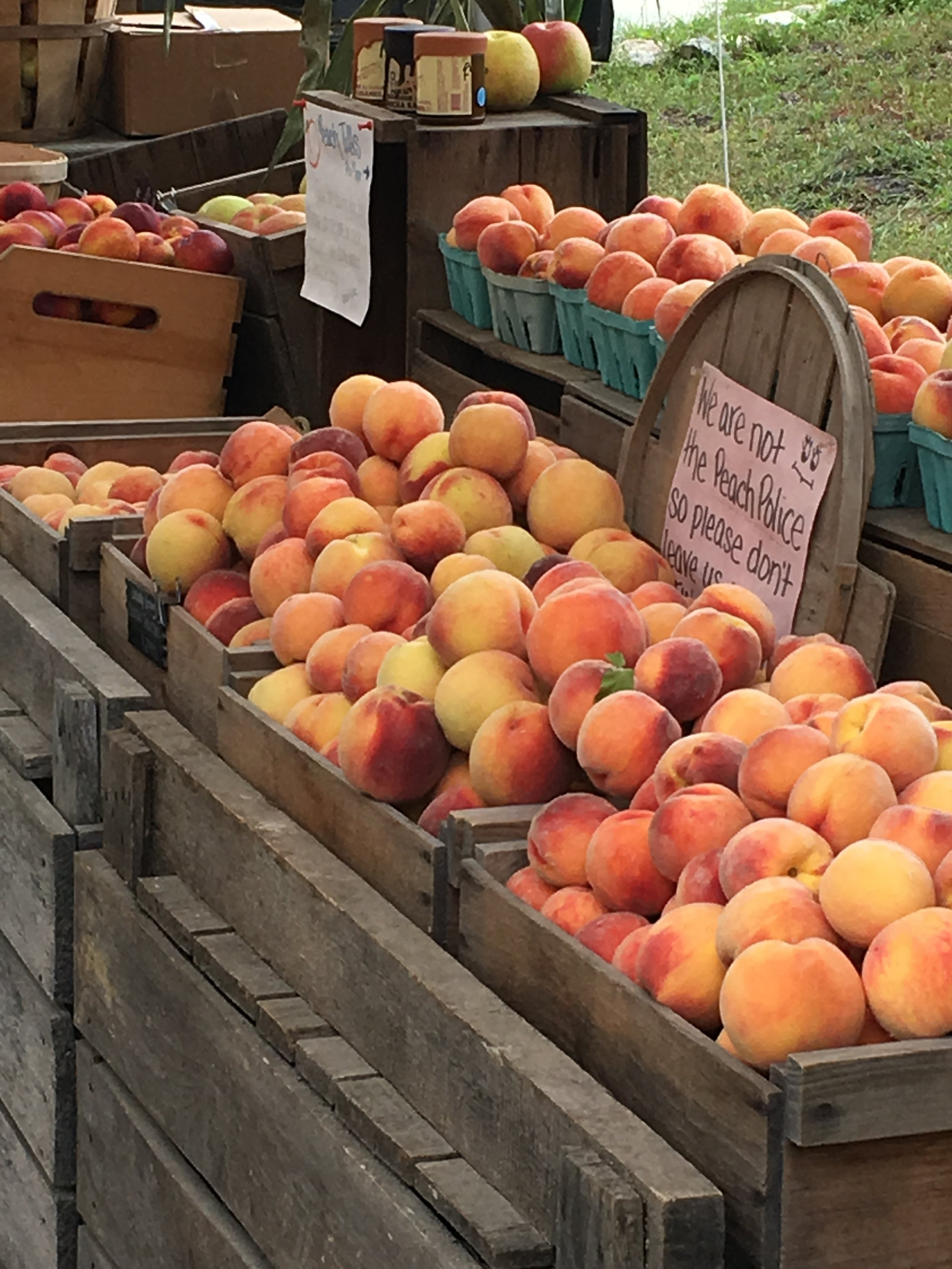 """Our local peaches at a nearby farm stand.  The sign reads """"we are not the peach police so please don't leave us fingerprints!"""""""