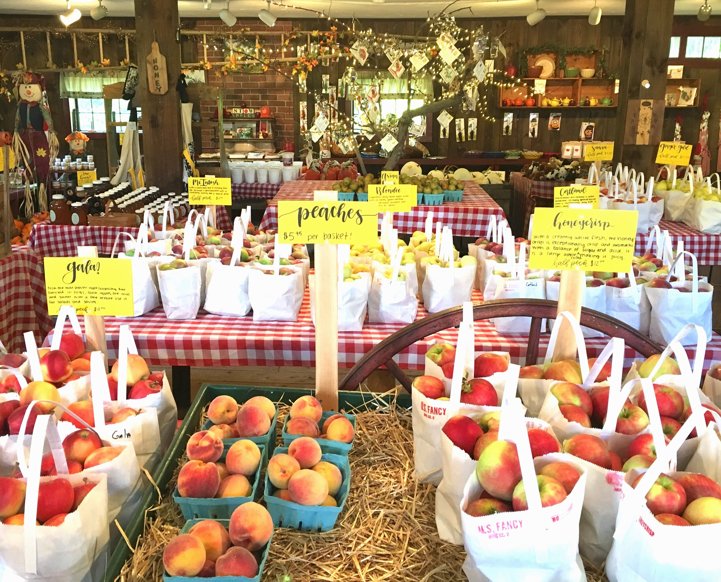 The farm store has dozens of types of apples including some rare heirloom varieties