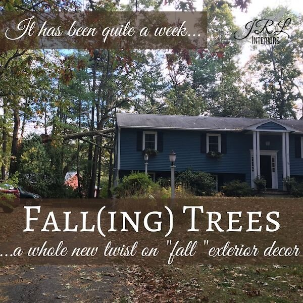 Fall(ing) Trees - a whole new twist on fall exterior decor!