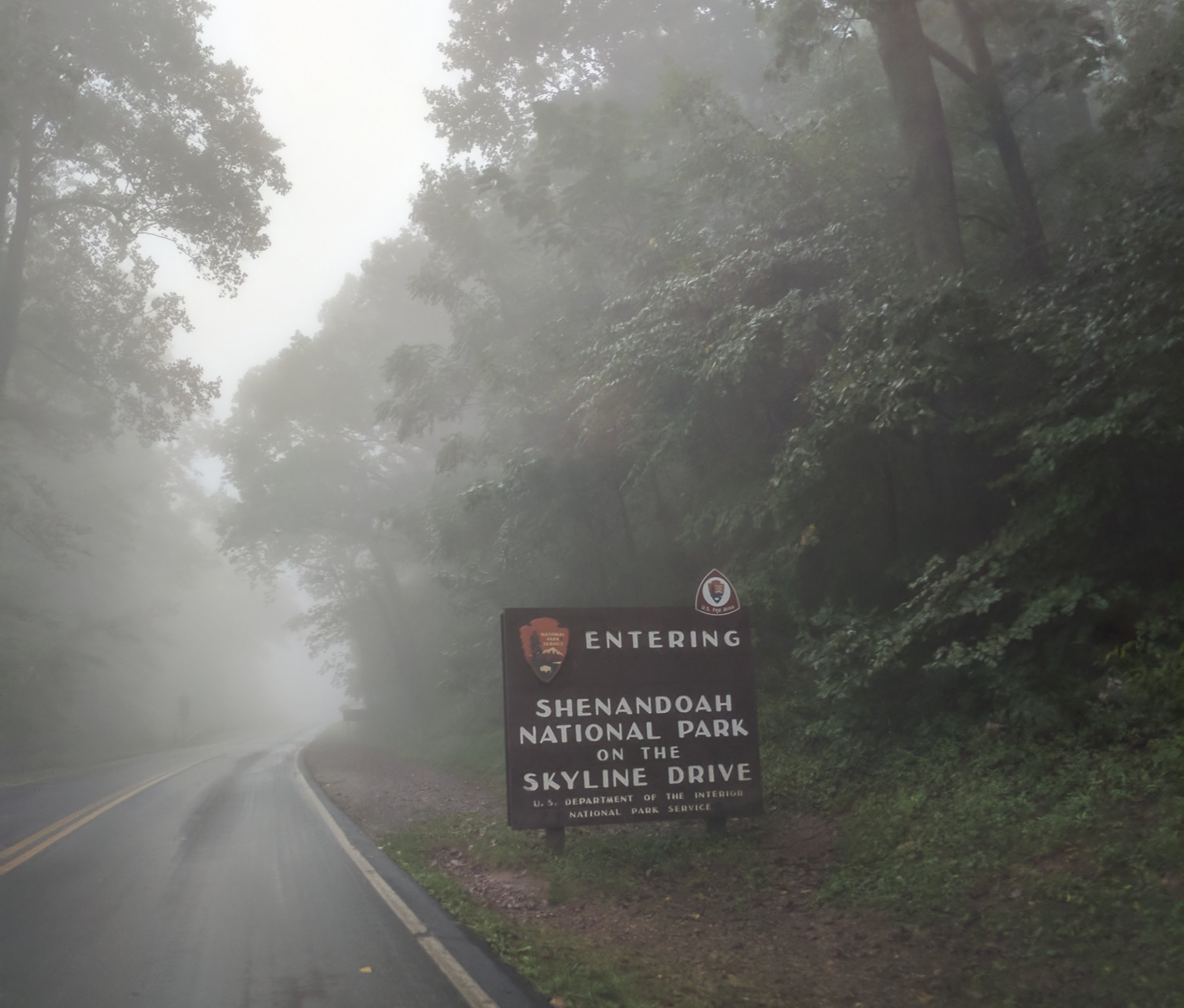 Rainy Drive into Shenandoah National Park