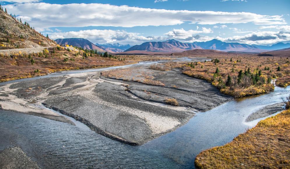 Savage River:  Denali National Park