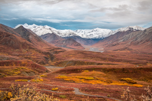 The Last Frontier indeed! This is what shocked me the most about Denali. It is the most well known park in Alaska probably. Almost any US citizen has at least heard of it, even if they don't know where it is. People come from all around the world to see it. I wonder how many realize how little of the park you can actually see. It is over 6,000,000 acres and there is 1, yes only 1, road into the park for 92.5 miles and you have to take a tour bus. Yes there are trails and a few landing strips if you want to get flown in for climbing Denali or the end of the road, but most of the park is inaccessible. It is very crowded (and I wasn't even there at peak season) so the trails are populated and wildlife is scarce. I wouldn't rate Denali in my top 10 parks due to the crowds and little room to explore (unless you plan on doing some multi-day hiking trips). Having to take the slow buses miles to get to a trailhead is not very enjoyable to me. This isn't like the Zion shuttles either. This is like taking a school bus back in the day. While I really did have a good time, on the scale of all the parks this is somewhere in the middle or lower half for me. I actually enjoyed all of the other 3 Alaska parks more. Still very awesome, don't get me wrong!