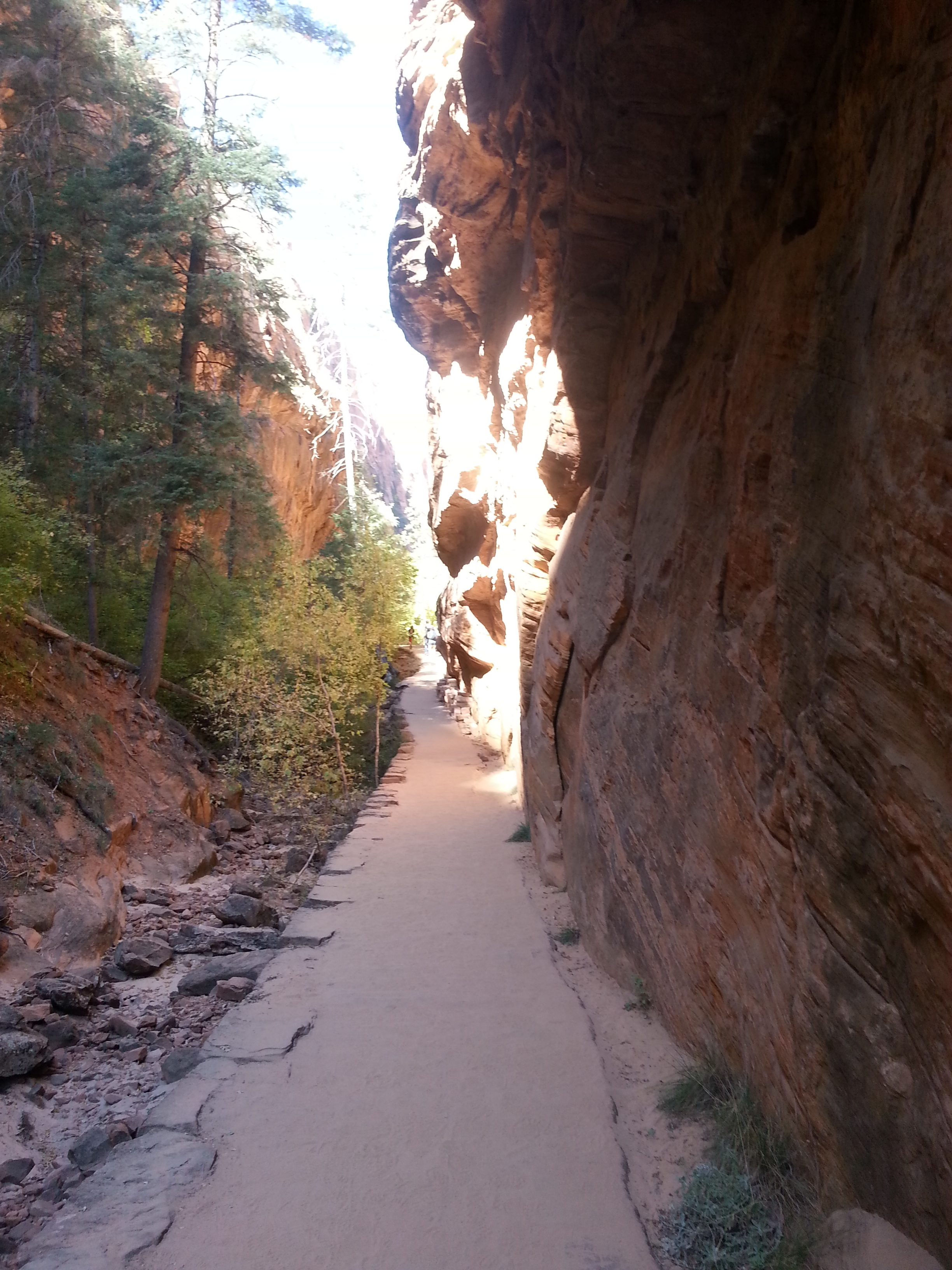 It starts from the Grotto Shuttle drop off in Zion Canyon and weaves its way up for the first two miles with decent elevation but a paved trail.