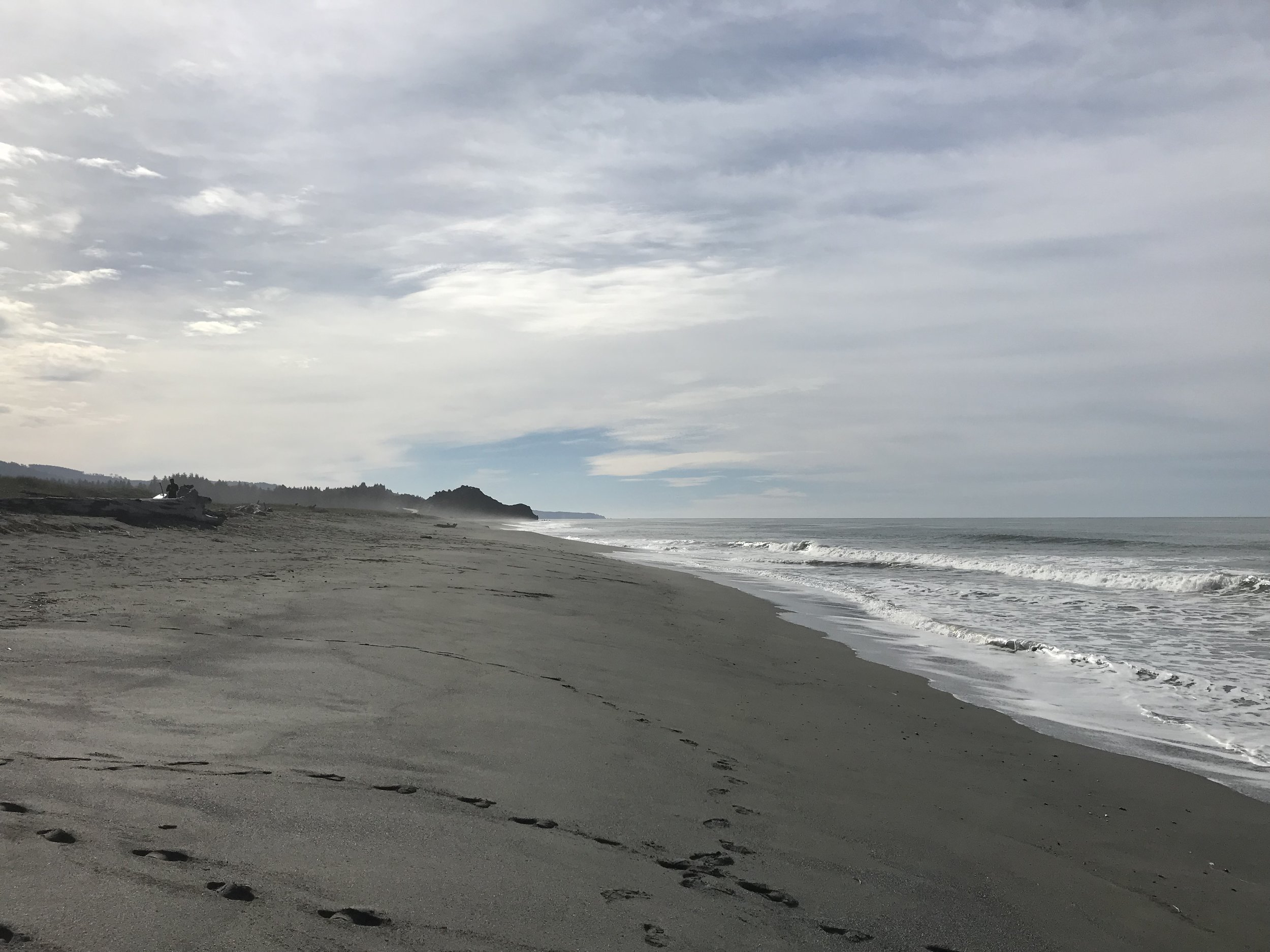 Hike Three: On the way into Redwood National Park you are going to run into the Pacific Ocean. Beach hiking is always encouraged at Hashtag59!