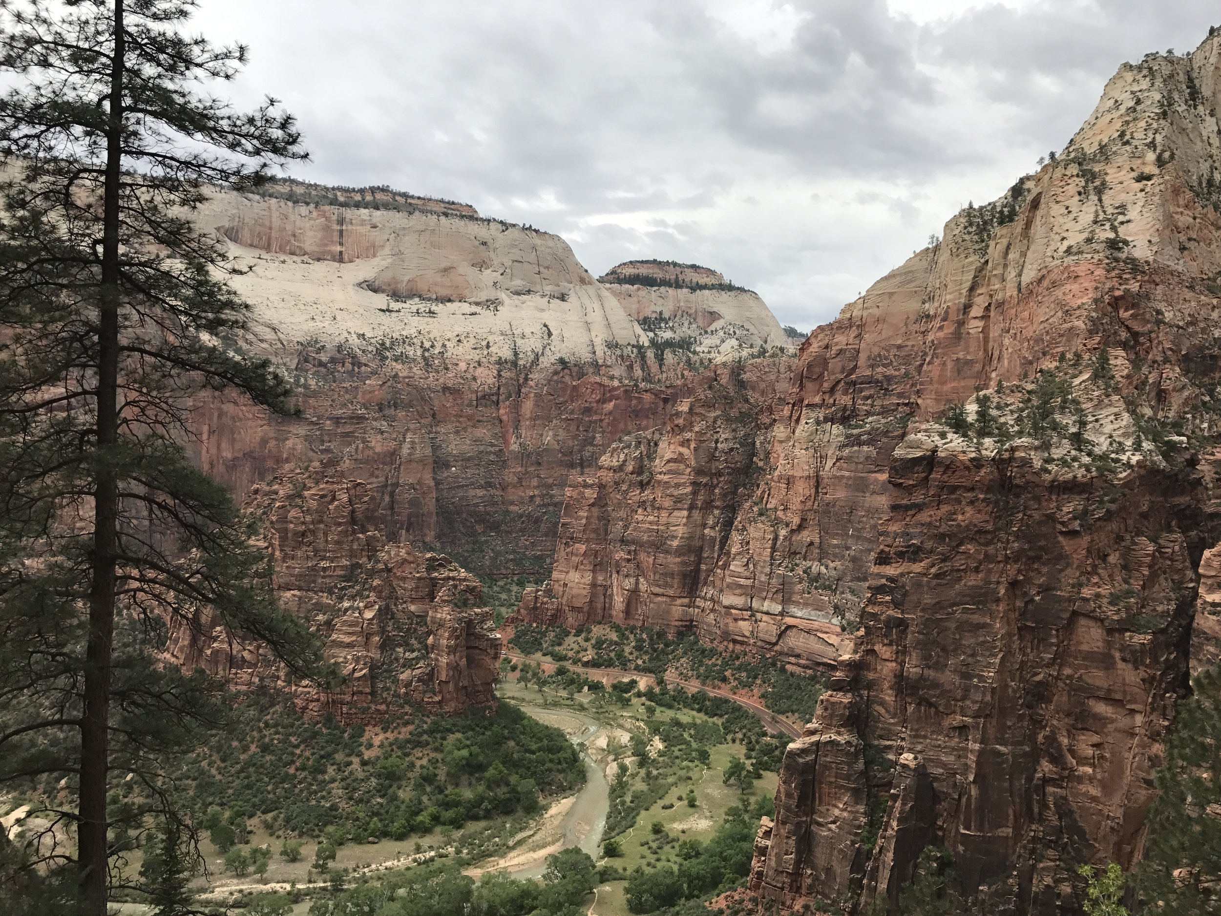 The first part of this hike leads up a steep but well paved trail and within 20 minutes of starting you'll feel like the Zion shuttle is miles below!