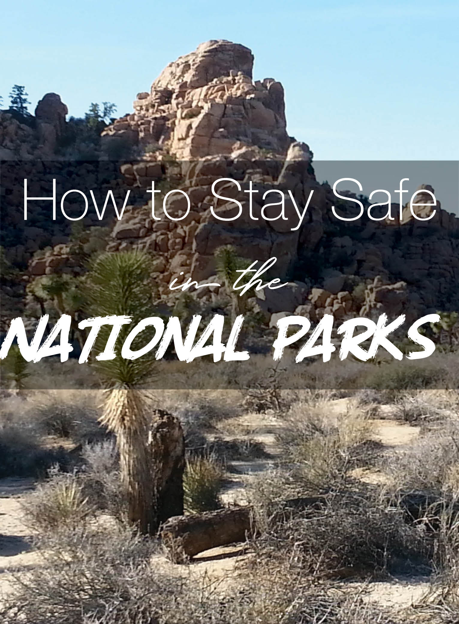 Safe National Parks.jpg