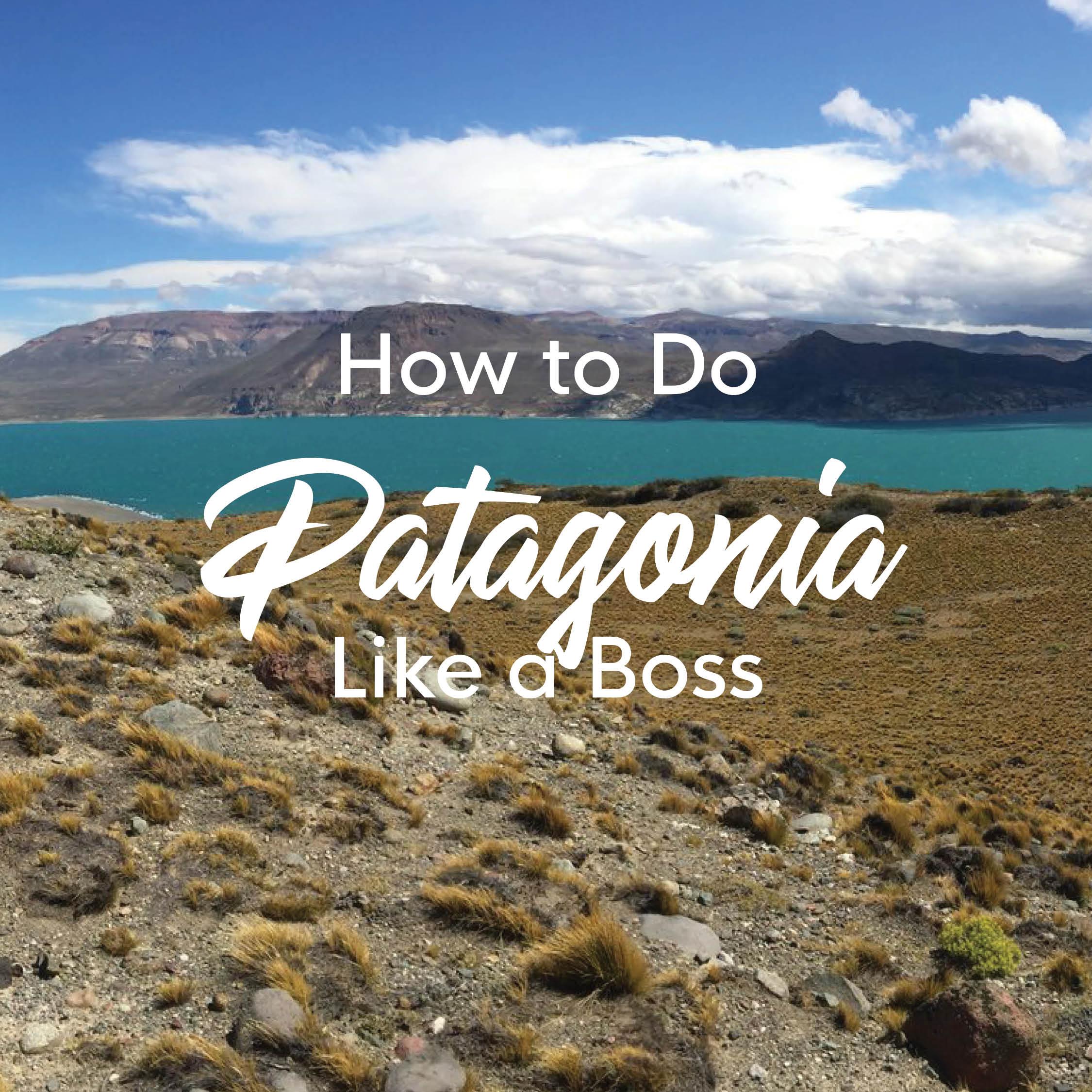 Patagonia image.jpg