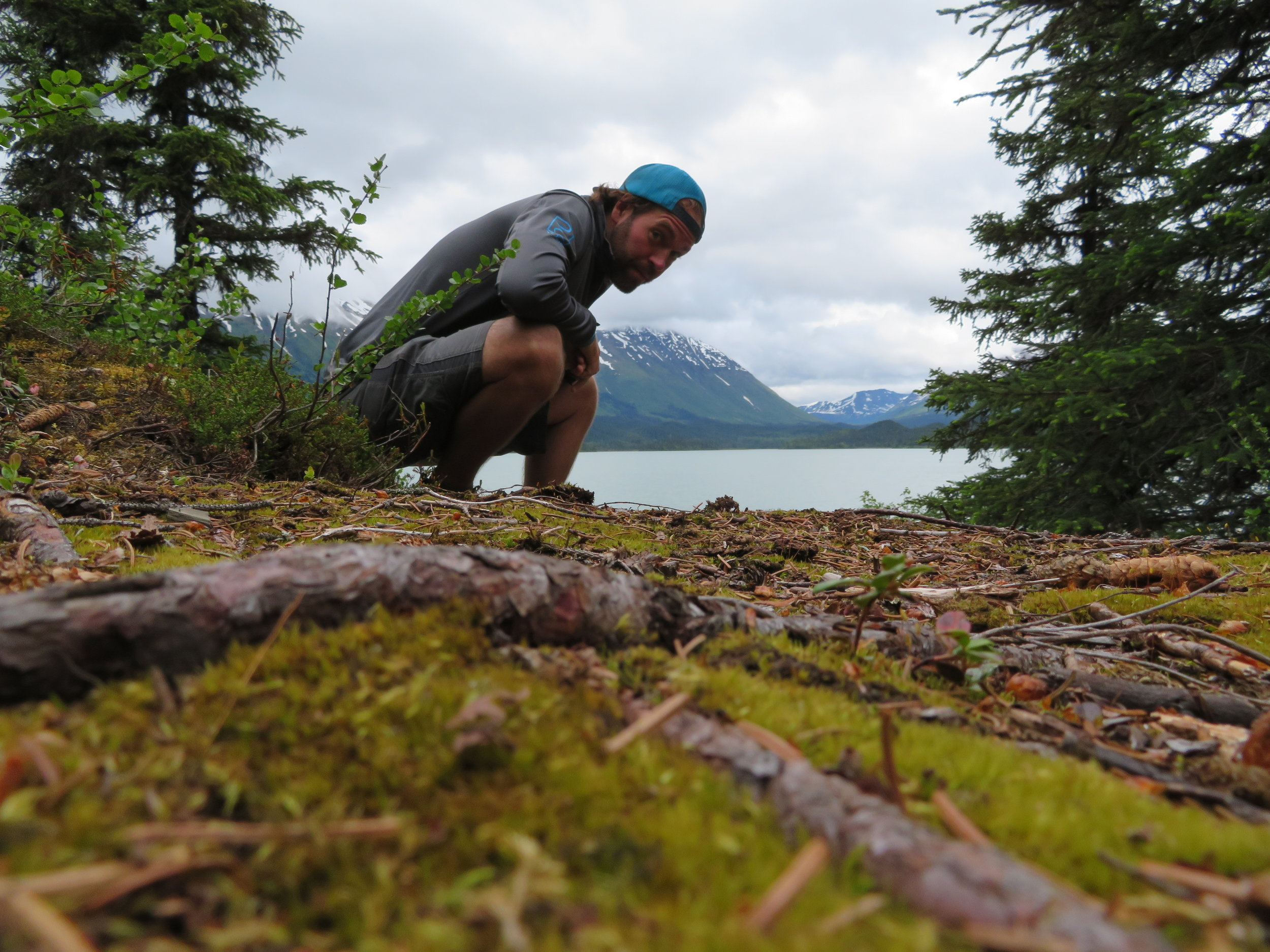 Here's looking at you Alaska!