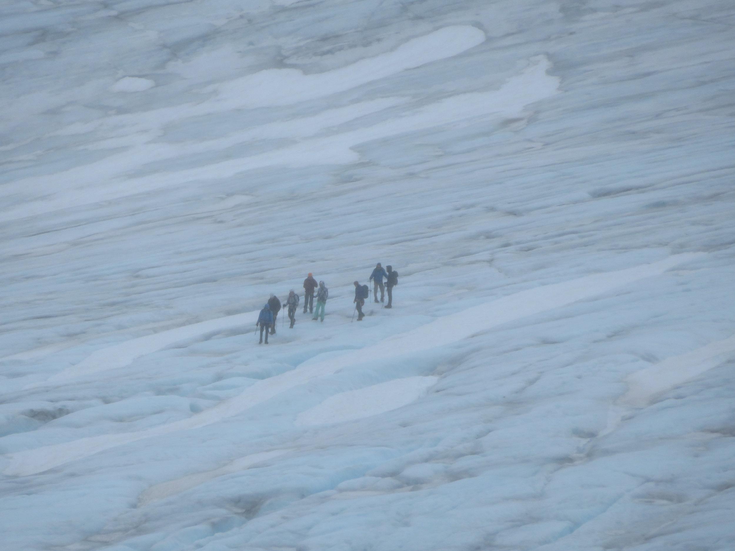 Exit Glacier Hiking in  Kenai Fjords National Park .