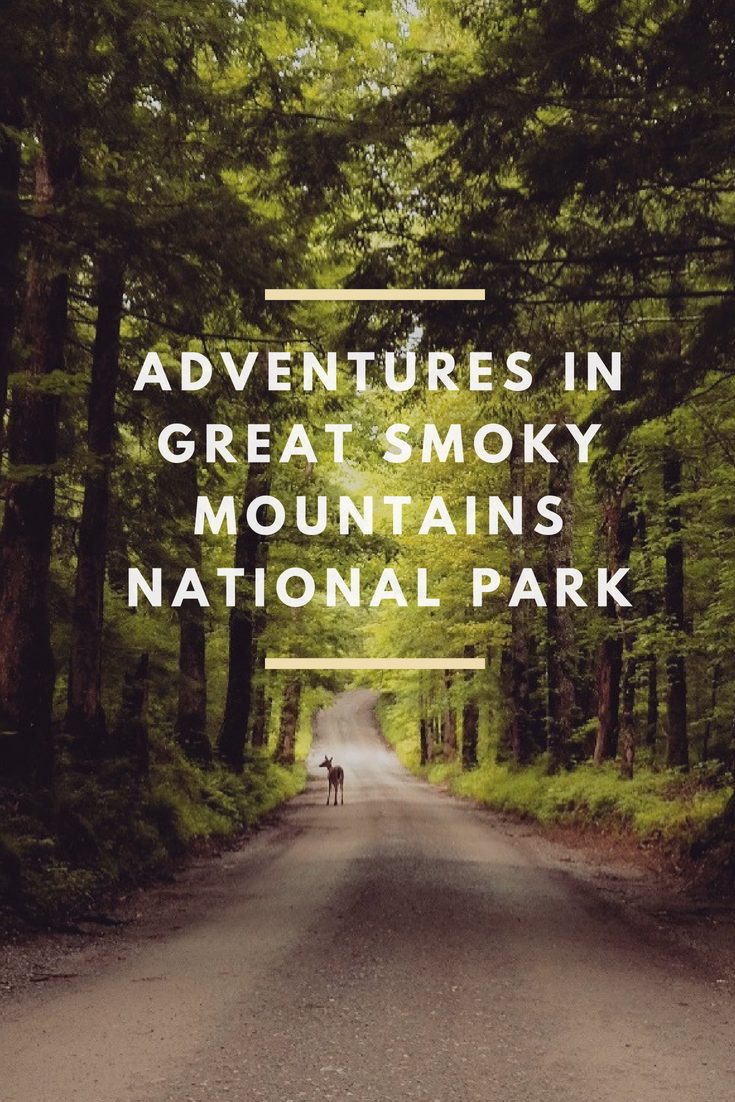 Adventures in Smoky Mountain National Park.png