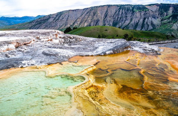 Mammoth Hot Springs: another can't miss of Yellowstone.