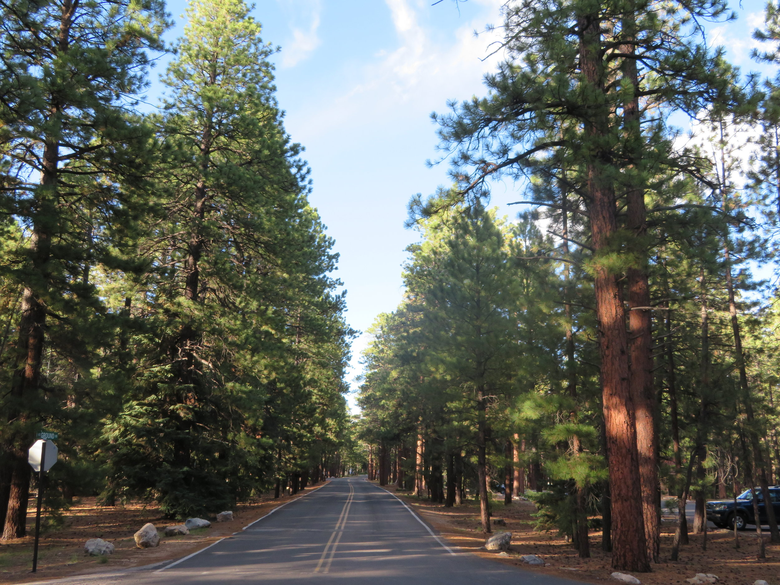 North Rim Grand Canyon Campsite.