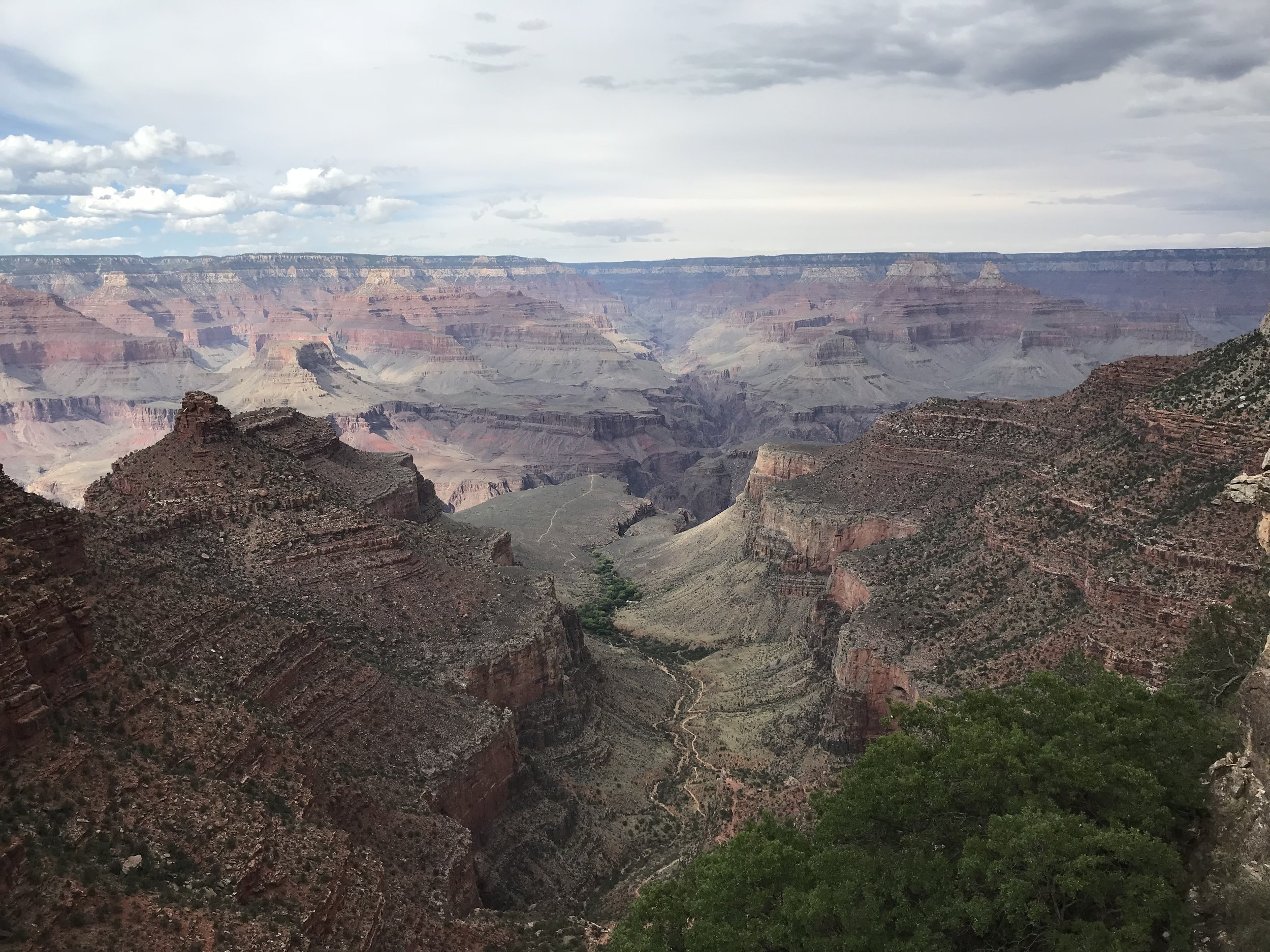 Looking into the Canyon!