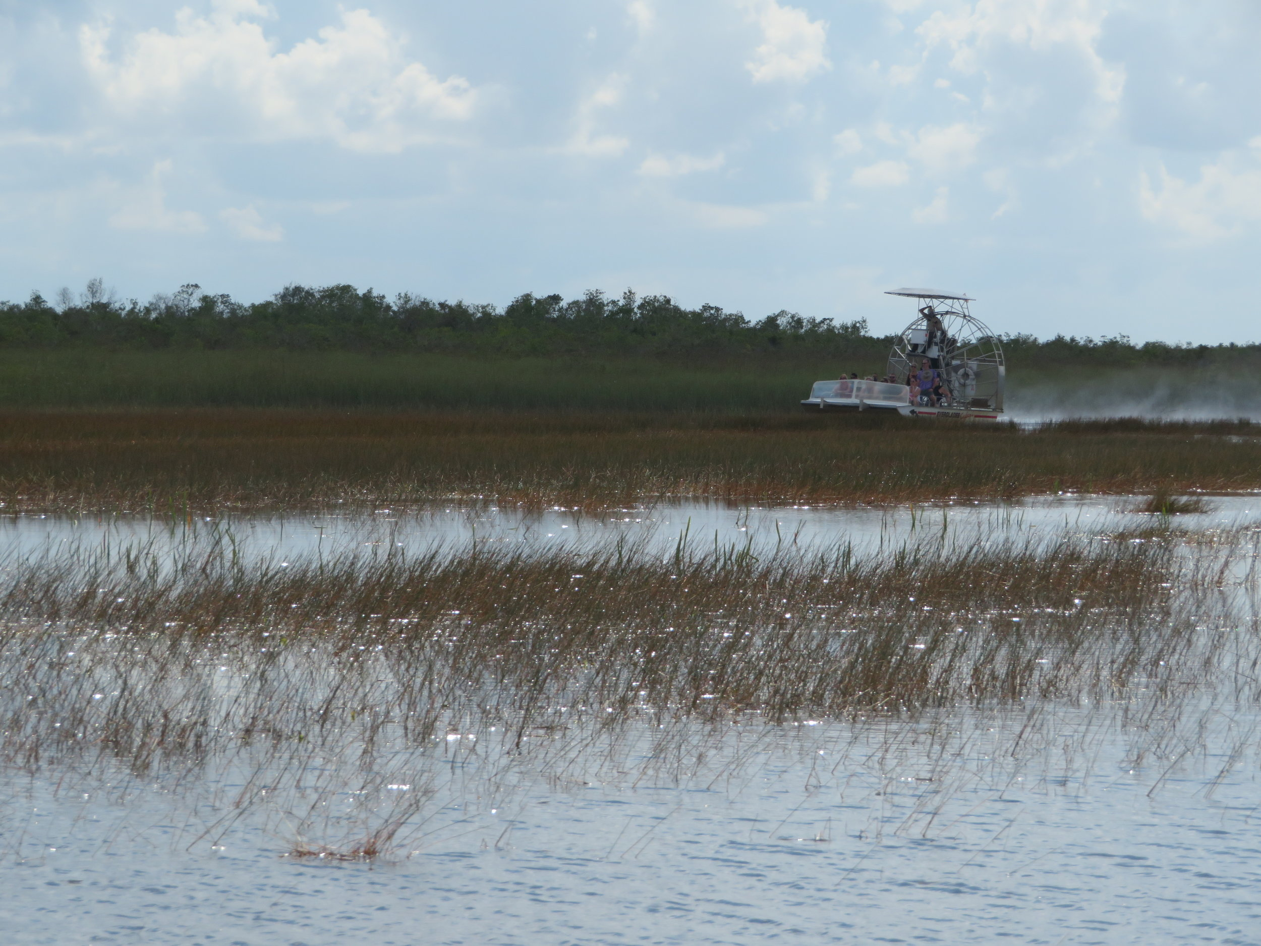 The eco friendly Airboat rides.