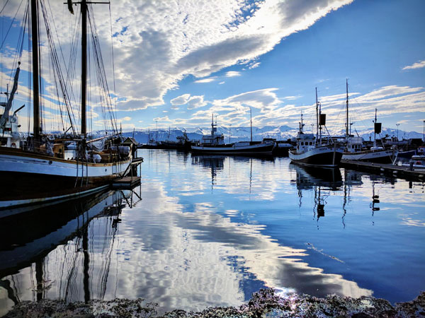 We unexpectedly swung into town on our Iceland road trip and enjoyed $20 beers by the harbor!