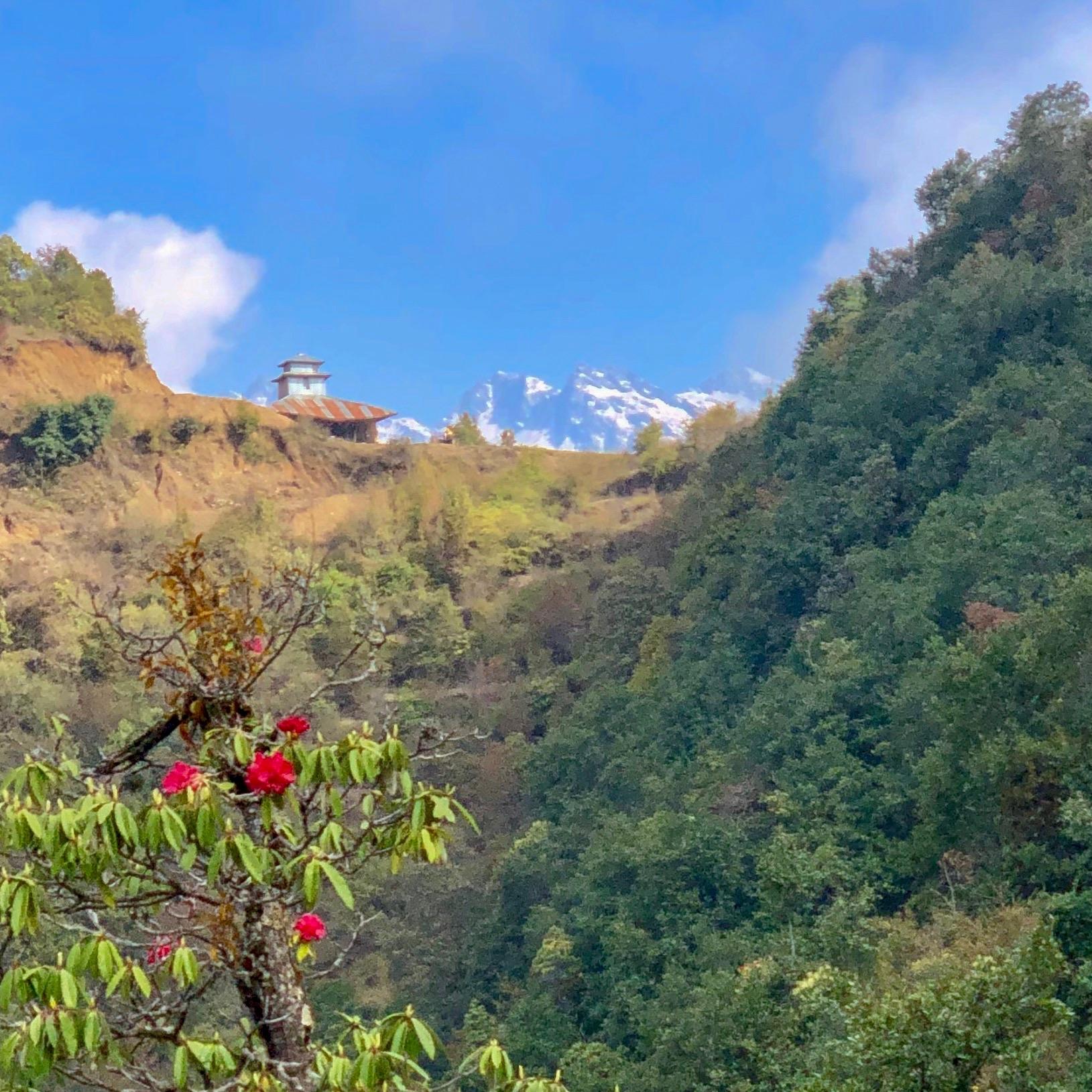 Helambu Trail.JPG