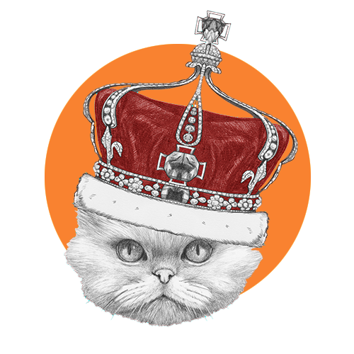 Royalty Program for Cats