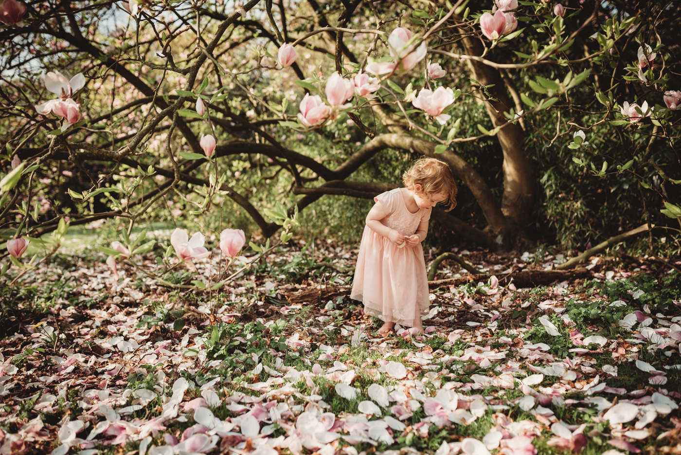 Girl under Magnolia dress by Hampshire Photographer Evie Winter