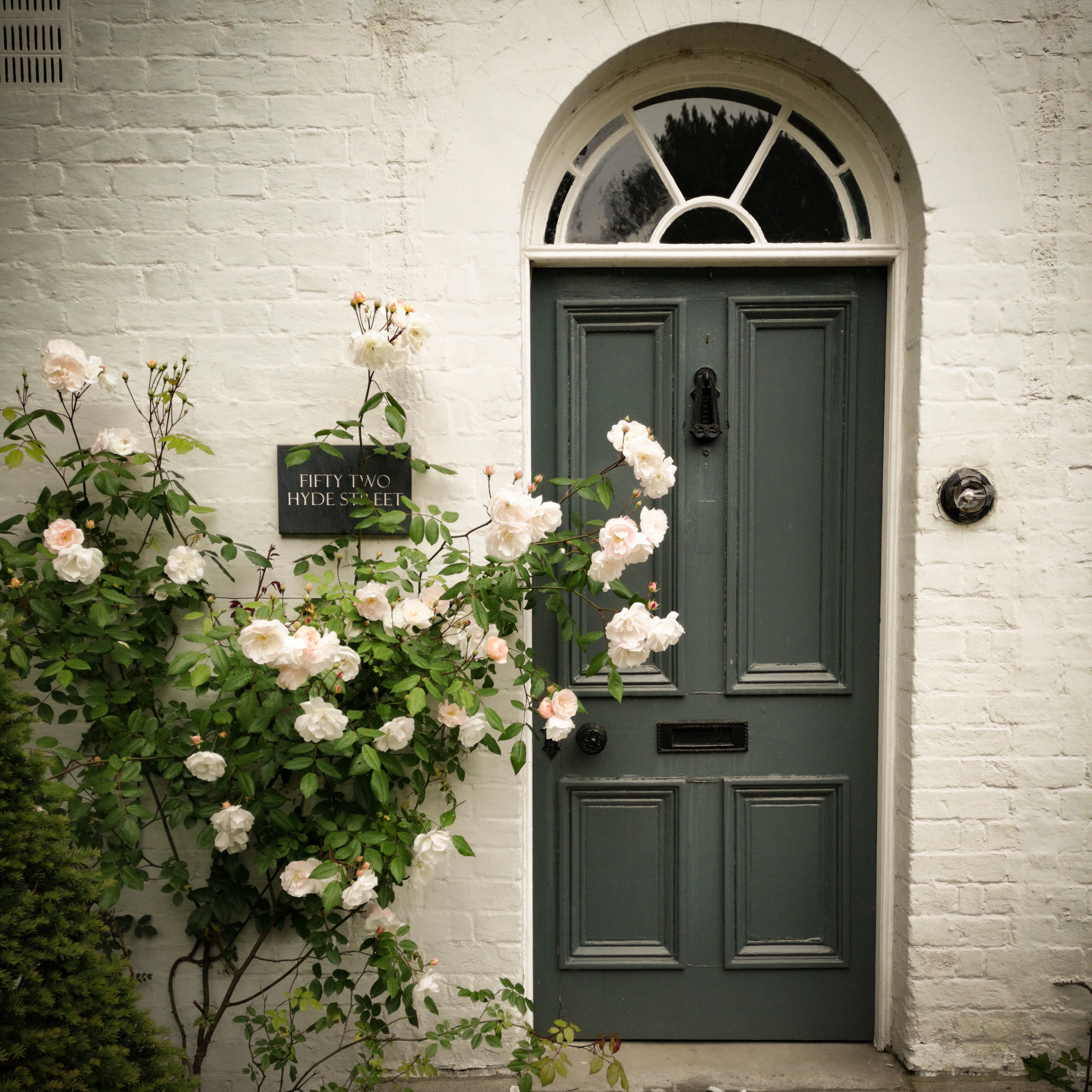 Pretty Winchester Door surrounded with Roses by Hampshire Family Photographer Evie Winter