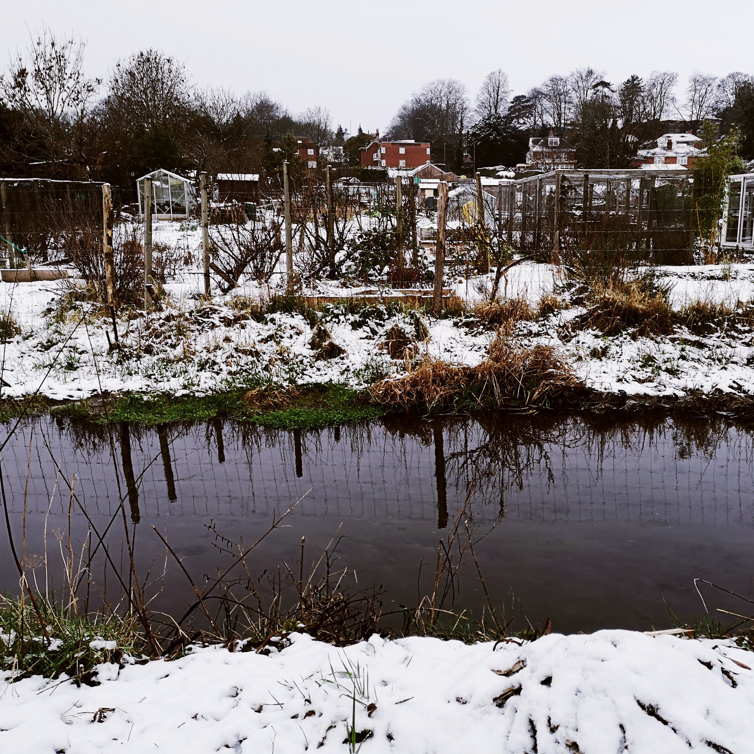 Itchen Riven, Winchester by Hampshire Photographer Evie Winter