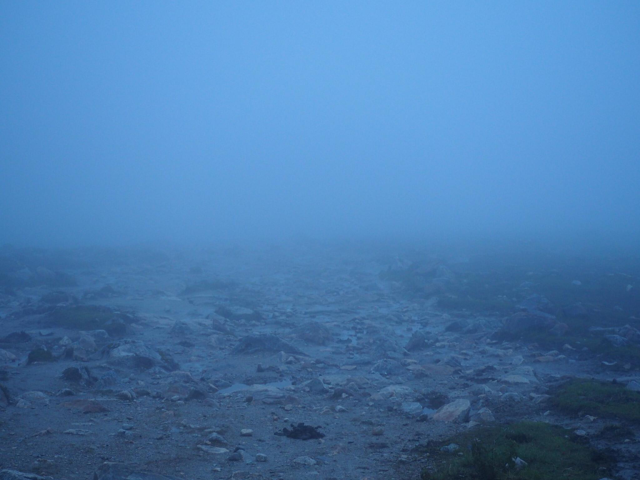 Fog. - Fog.
